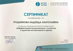 Сертификат Гродникова - Эффективная коммуникация с клиентом