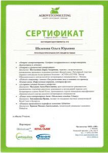 Шелепова-2
