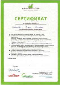 Шелепова-3