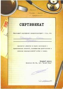 Шелепова-4