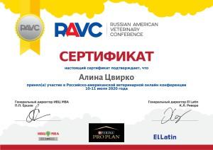 Сертификат - Алина Цвирко