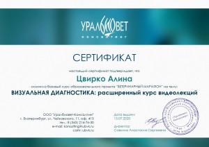 Сертификат ВИЗУАЛЬНАЯ ДИАГНОСТИКА расширенный курс видеолекций