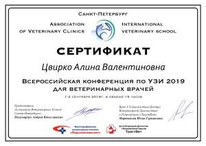 Сертификат Всероссийская конференция УЗИ