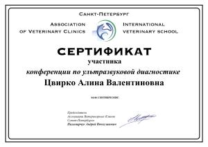 сертификат Цвирко - конференция по ультразвуковой диагностике 04-06.09.20