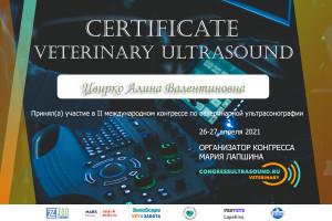 sertifikat alina