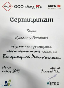 Кузьмин