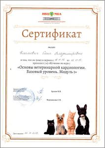 certificate_57_Vysokomornaya