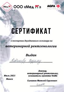 certificate_1_kotikov