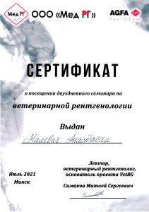 certificate_2_malevich