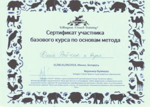 Рыбчик Юлия базовый курс по основным методам
