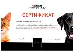 Сертификат Строк