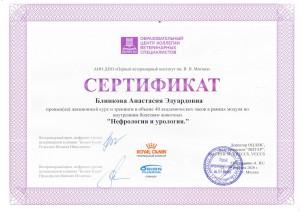 Сертификаты Блинкова-1