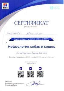 Сертификаты Блинкова-2
