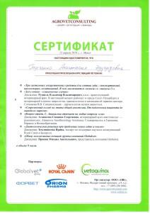 Сертификаты Блинкова-4