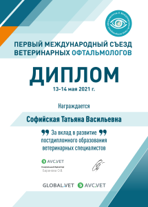 Софийская Татьяна Васильевна 13-14 мая