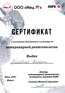 certificate_3_tratsevskaia