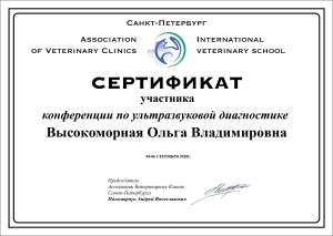 certificate_63_Vysokomornaya