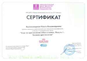 Высокоморная сертификат