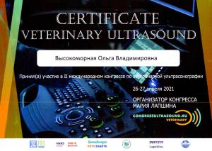 Высокоморная сертификат Ultrasound 05.05