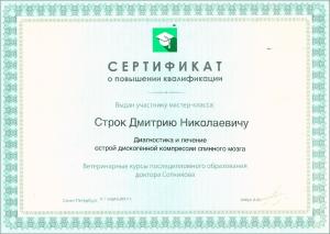 certificate_16_Strok
