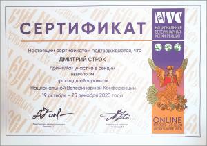 certificate_19_Strok