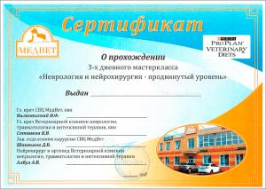 certificate_20_Strok