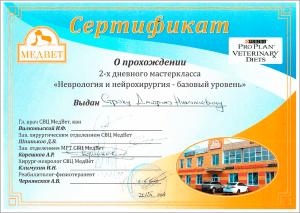 certificate_21_Strok