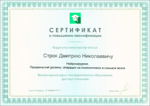 certificate_22_Strok