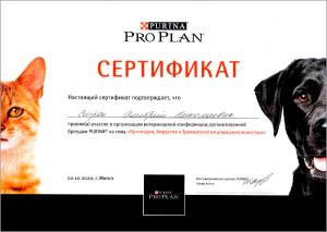 certificate_23_Strok