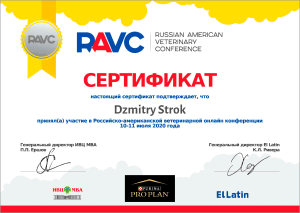 certificate_24_Strok