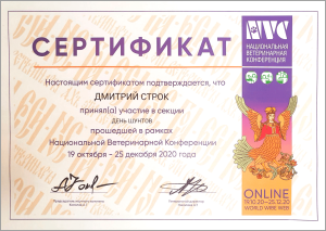 certificate_25_Strok