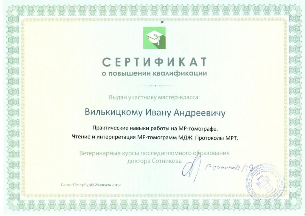 скан сертификат Вилькицкий И.А.