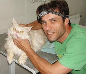 Стоматолог Котляров