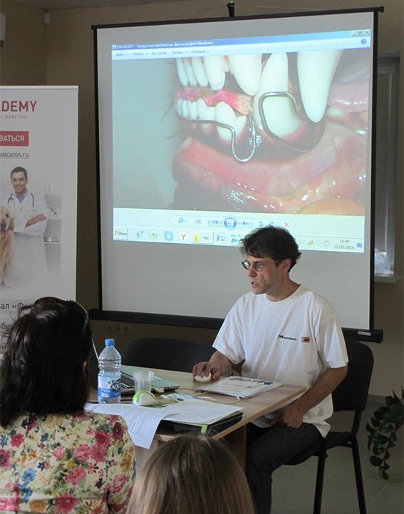 ветеринарный стоматолог