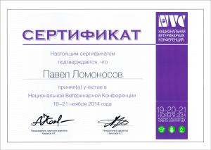 certificate_11_Lomonosov