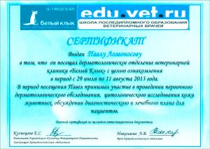 certificate_12_Lomonosov