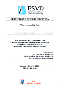 certificate_13_Lomonosov