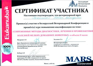 certificate_14_Lomonosov