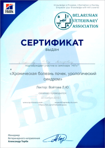 certificate_6_Lomonosov