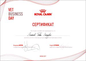 certificate_9_Lomonosov