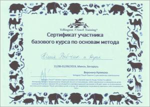 certificate_26_Rybchik