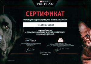 certificate_28_Rybchik
