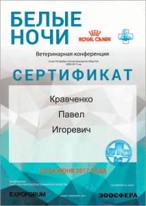 certificate_30_Kravchenko