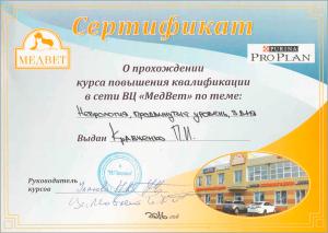 certificate_31_Kravchenko