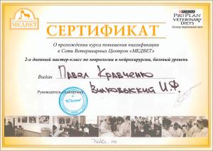 certificate_32_Kravchenko