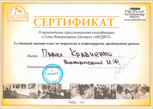 certificate_33_Kravchenko