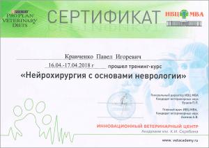 certificate_34_Kravchenko