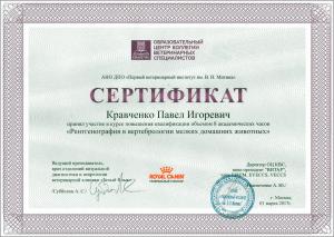 certificate_36_Kravchenko