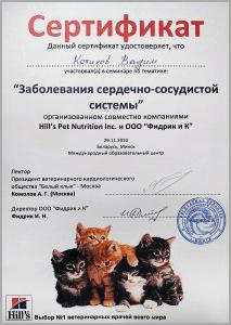 certificate_38_Kotikov
