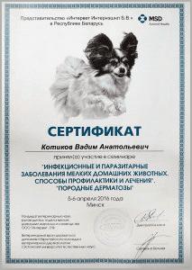 certificate_39_Kotikov